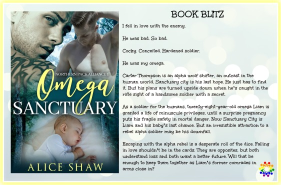 OMEGA SANCTUARY BLURB