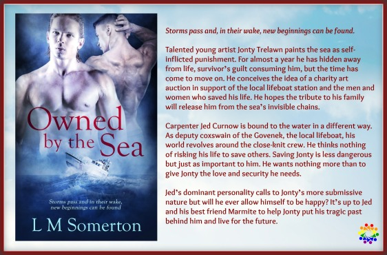 OWNED BY THE SEA BLURB