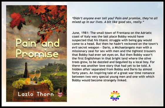 PAIN AND PROMISE BLURB