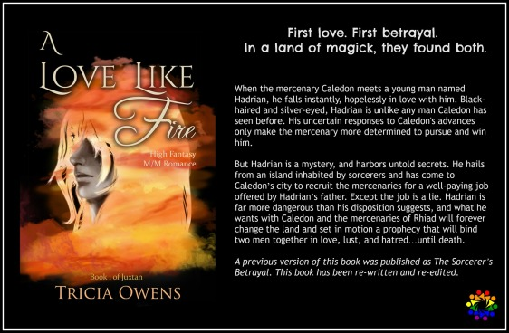 A LOVE LIKE FIRE BLURB
